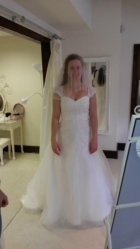 Ivory Lace and Organza Wedding Dress