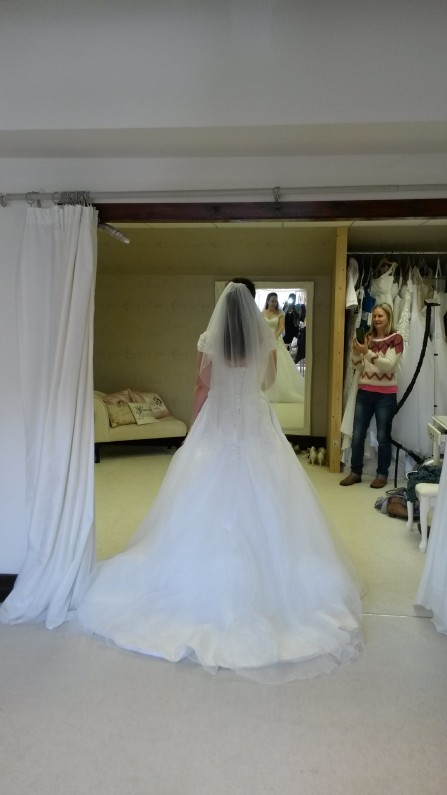 Lace and Organza Wedding Dress with Long Train
